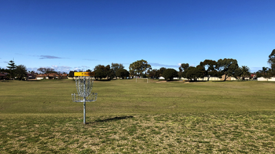 An image of a basket called Discatcher in the middle of forrest park