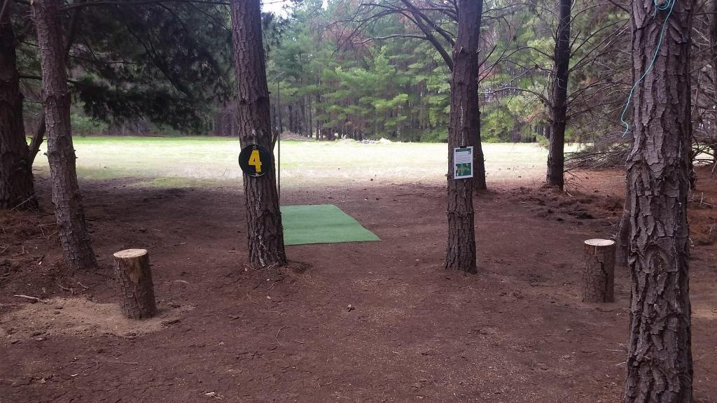 image of the Pine Lines Disc Golf Course