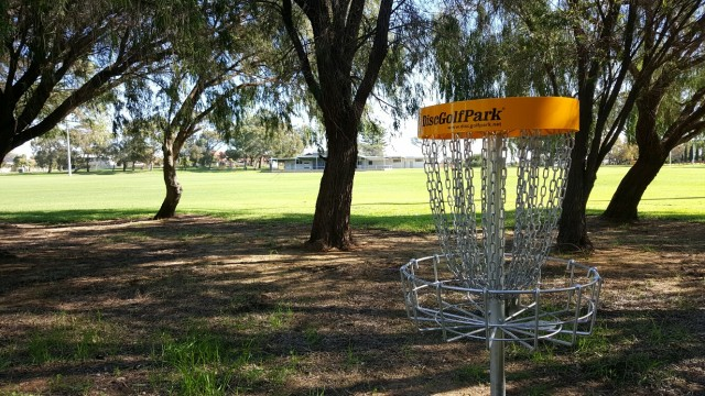 an image of a disc golf in the park