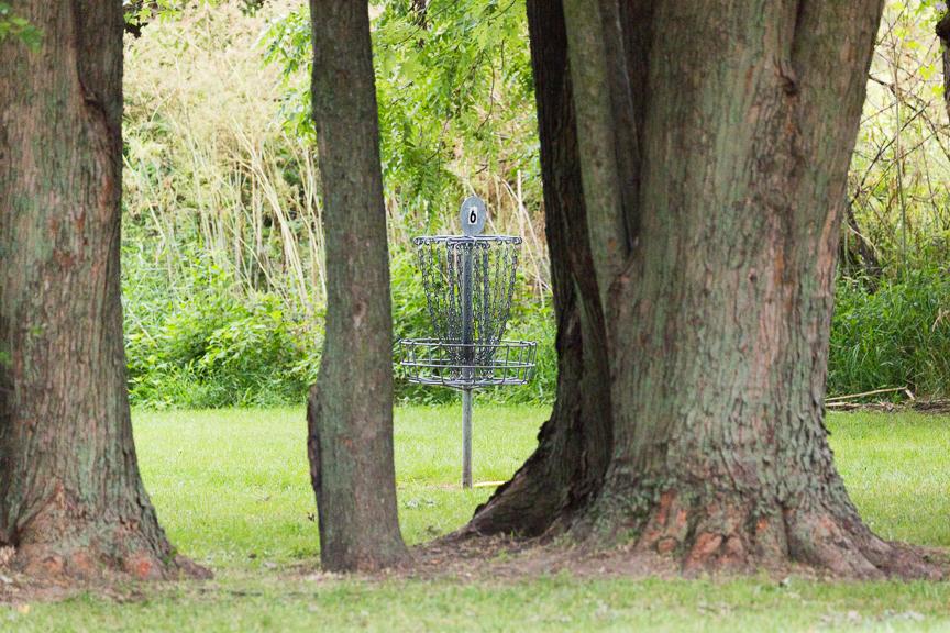 An image showing disc golf basket