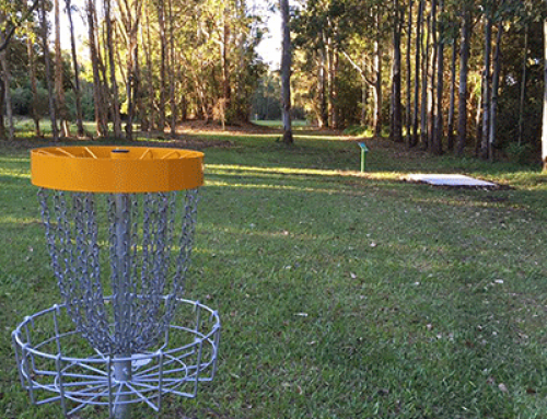 Have You Visited Ballina's Bicentennial Gardens Disc Golf Park?