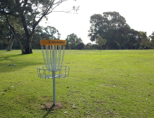 Disc Golf a global phenomenon
