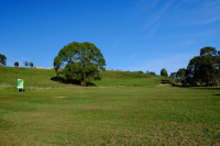 An image disc golf park course