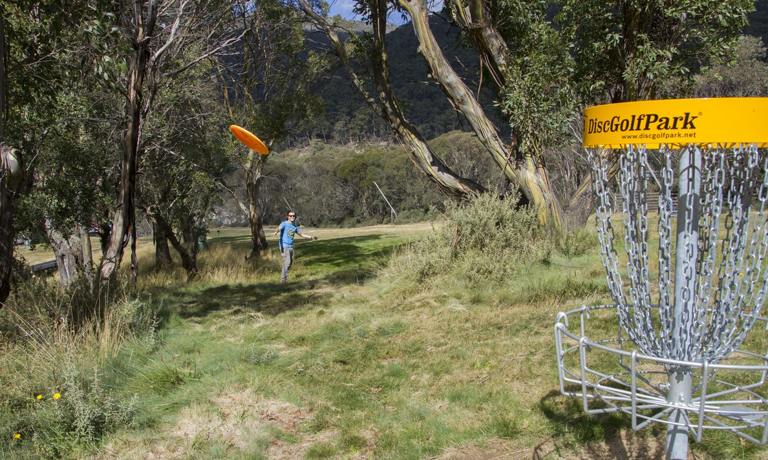 An image showing a man playing disc golf frisbee
