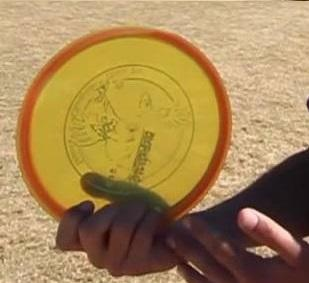 An image showing hand holding a disc golf frisbee