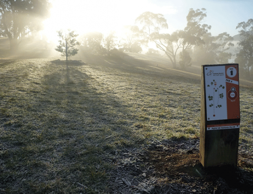 A Piece of Australian History – Poimena Reserve Disc Golf Course