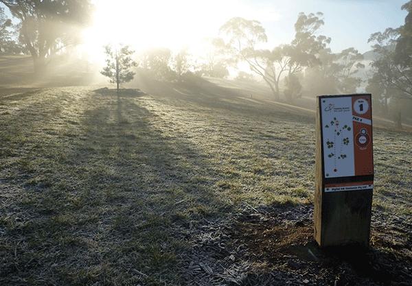 RAD Recreation Activity Design Featured Courses Poimena Disc Golf Course