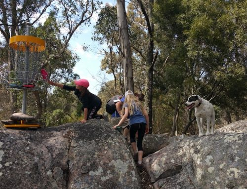 Granite Mountain Disc Golf Course – The must play course if you're in Queensland