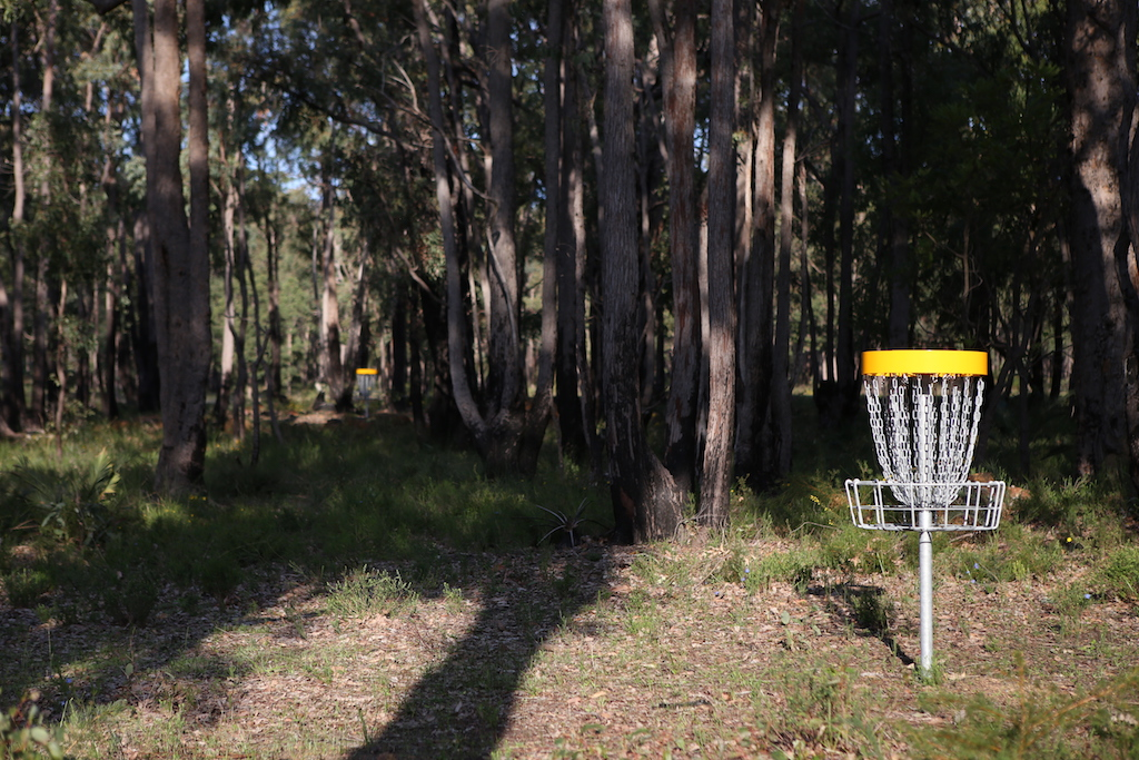 an image of disc golf basket in a disc golf course