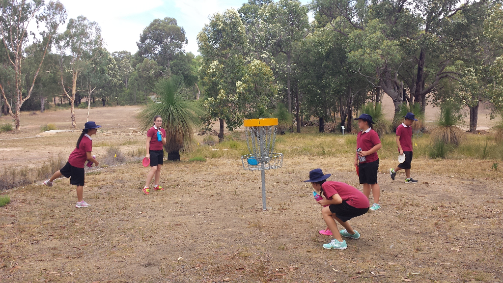 an image of boys playing disc golf
