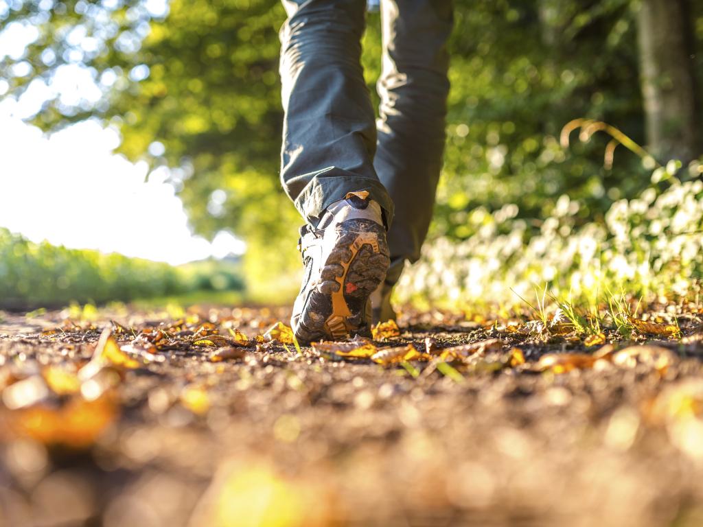 an image of feet walking